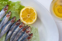 Fresh fish on a plate Stock Photography