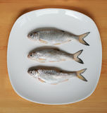 Fresh fish on a plate. Fresh roach on a white plate on a wooden table Royalty Free Stock Images
