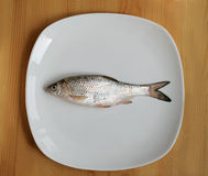 Fresh fish on a plate. Fresh roach on a white plate on a wooden table Stock Photography
