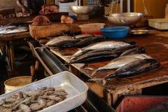 Fish market on Sri lanka stock image