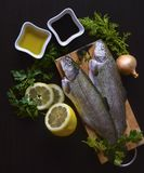 Fresh fish rainbow trout with greens royalty free stock image