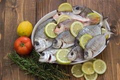 Fresh fish. Royalty Free Stock Photography