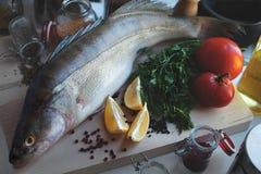 Fresh fish Stock Image