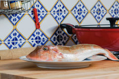 Fresh fish with red scales Royalty Free Stock Photography
