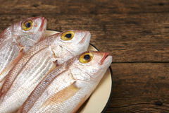 Fresh fish, red snapper. In a plate Royalty Free Stock Image