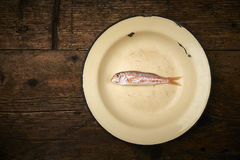 Fresh fish, red snapper. In a plate Royalty Free Stock Photography