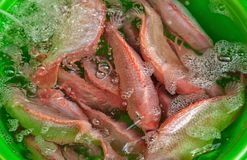 Fresh fish for sale. At ben thanh market Royalty Free Stock Photos