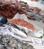 Fresh fish on sale in fish market outdoor market Stock Photos