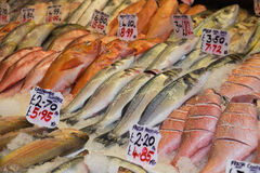 Fresh fish for sale Stock Image