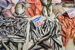 Fresh fish for sale at a market. In Madrid, Spain Stock Images