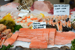 Fresh fish for sale at the market Stock Image