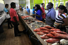Fresh fish for sale in Nadi fish market Fiji. Fresh fish for sale in Nadi fish market in Viti levu Island, Fiji. Fisheries are the third largest natural resource Royalty Free Stock Images