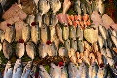 Fresh fish sale. Fresh and natural fish market Royalty Free Stock Photography