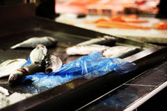 Fresh fish for sale in an open air food market. Fresh fish in an open air food market Stock Images