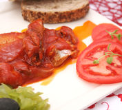 Fresh fish with a sauce of tomatoes Stock Photos