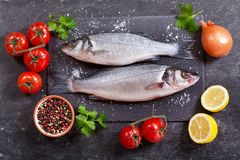 Fresh fish sea bass with ingredients for cooking. On dark background, top view Stock Image