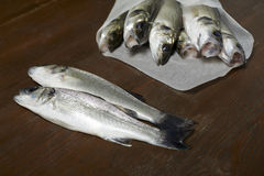 Fresh fish, sea bass. Ready for cooking Royalty Free Stock Photos