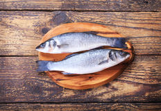 Fresh fish sea bass. On wooden table Stock Images