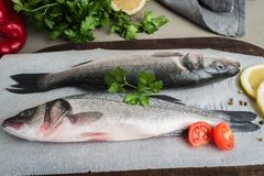 Fresh fish sea bass on wooden table.  Royalty Free Stock Photo