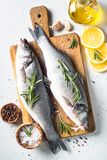 Fresh fish seabass on white. Fresh fish seabass. Raw fish seabass with spices and herbs ingredients for cooking on white background. Top view Stock Photography
