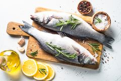 Fresh fish seabass on white. Fresh fish seabass. Raw fish seabass with spices and herbs ingredients for cooking on white background. Top view Royalty Free Stock Photos