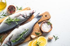 Fresh fish seabass on white. Fresh fish seabass. Raw fish seabass with spices and herbs ingredients for cooking on white background. Top view with copy space Stock Photography