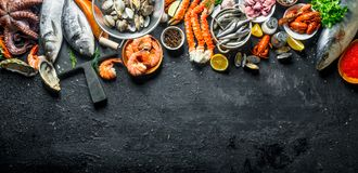Fresh fish and seafood. On black rustic background stock images
