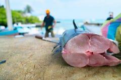 Fresh fish at seafood market. In Ecuador Royalty Free Stock Photo