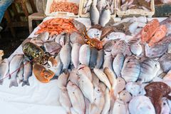 Fresh fish and seafood on market in Essaouira. Fresh fish and seafood on the market in port. Essaouira, Morocco Stock Photo
