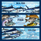 Fresh fish seafood restaurant sketch banner set Stock Image