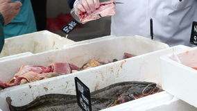 Fresh Fish Selling stock video footage