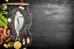 Fresh fish with shrimp, lemon and spices. Stock Photos