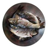 Fresh Fish in a Sieve Royalty Free Stock Photography