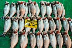 Fresh fish sold Royalty Free Stock Photos