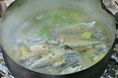 Fresh fish-soup 1 Royalty Free Stock Photo
