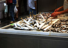 Fresh Fish in a Spanish Market. Fresh Fish stall in a market stock image