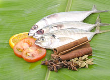 Fresh fish and spices isolated on banana leaf Royalty Free Stock Photo
