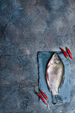 Fresh fish with spices on a stone board. Fresh fish with chilli isolated on a stone board Stock Photos