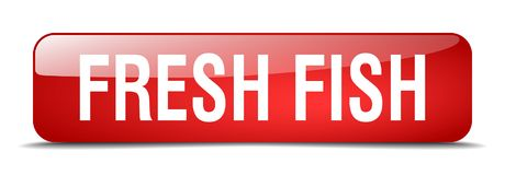 Fresh fish button. Fresh fish square 3d realistic isolated glass web button. fresh fish Stock Photography