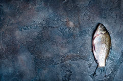Fresh fish on a stone board. Fresh fish isolated on a stone board Royalty Free Stock Photography
