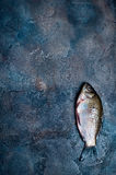 Fresh fish on a stone board. Fresh fish isolated on a stone board Stock Photo