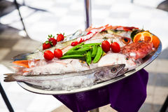 Fresh fish stored on the tray. A variety of fresh fish stored on ice on the tray Stock Photo