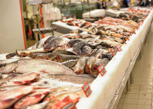 Fresh fish in the supermarket Royalty Free Stock Photo