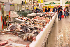 Fresh fish in the supermarket Stock Photography