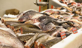 Fresh fish in the supermarket Royalty Free Stock Photos