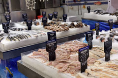 Fresh fish in the supermarket Royalty Free Stock Image