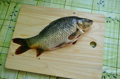 Fresh fish on the table. (carp specifically Royalty Free Stock Photo