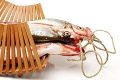 Fresh fish. On white background Royalty Free Stock Photo