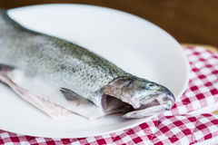 Fresh fish in a white plate Stock Photo