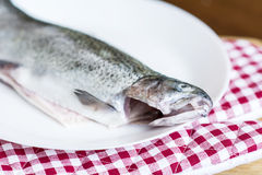 Fresh fish in a white plate Stock Photos